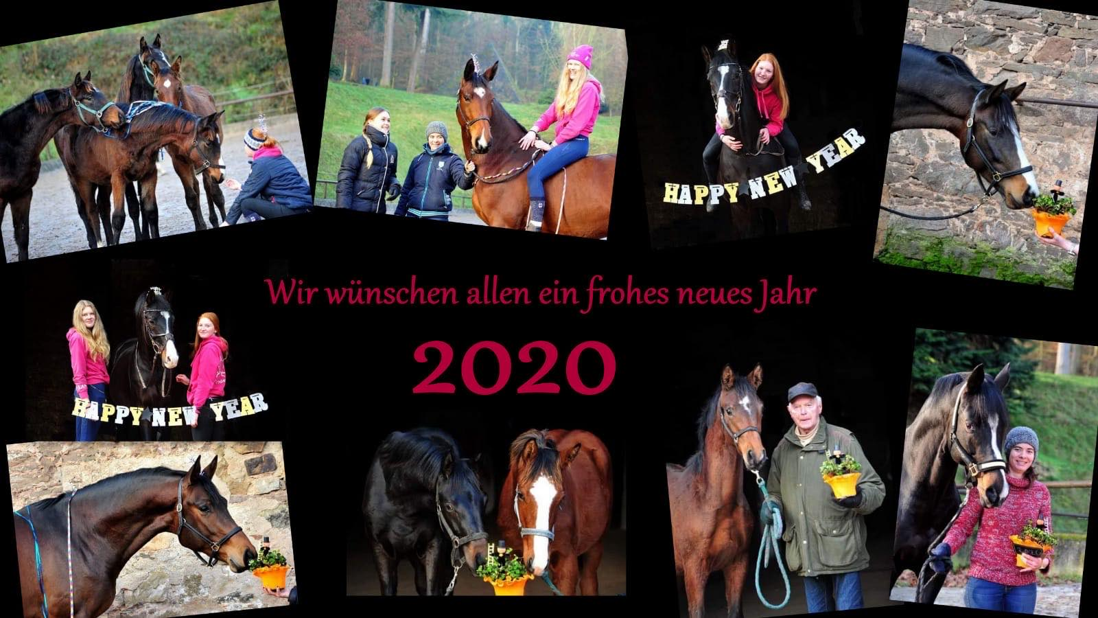 Happy New Year 2020 - Trakehner Gestüt Hämelschenburg 2019 - Foto: Beate Langels