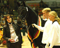 Songline by Summertime out of Schwalbenspiel by Exclusiv - Champion at the Trakehner Selection 2006, picture: Peter Richterich
