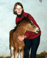 Filly by Freudenfest - Exclusiv